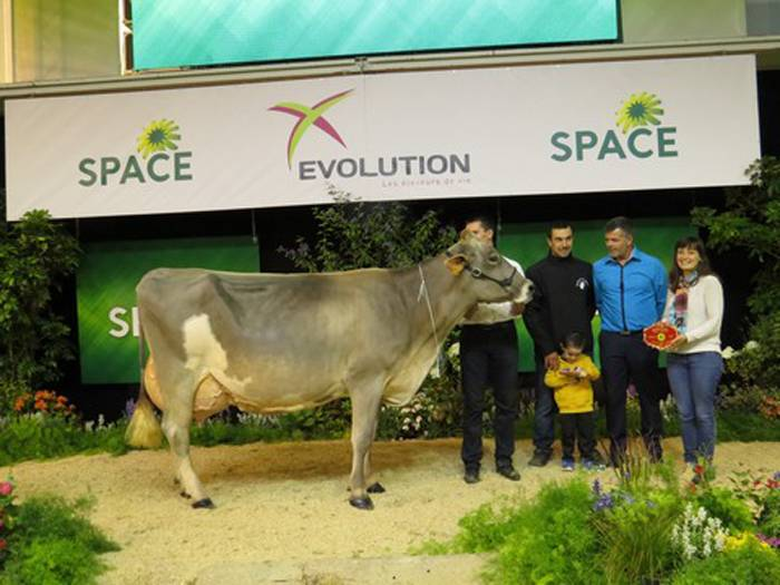 HOLIDAY - CHAMPIONNE ADULTE BRUNE SPACE 2017